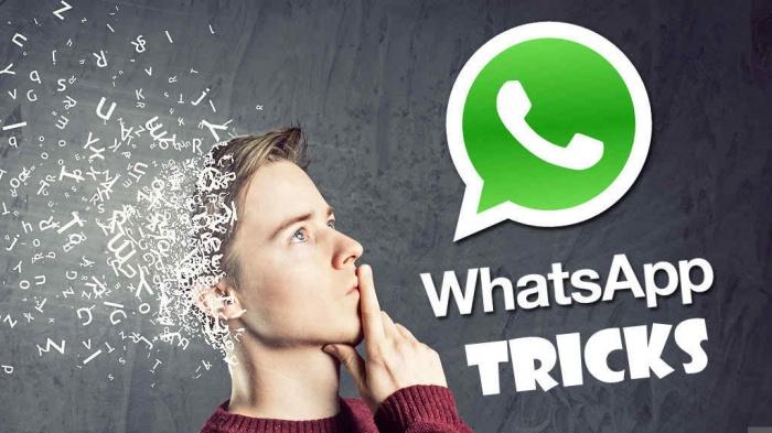 WhatsApp এর সেরা ১০টি টিপস ও ট্রিক্সস