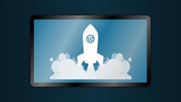WordPress টিউন রিভিশন বন্ধ করুন এবং ডাটাবেজের সাইজ বাঁচান