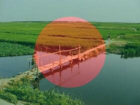 Bangladesh Flag Filter – আপনার ছবিতে মিশান বাংলাদেশ পতাকার রং (AppsforBD)