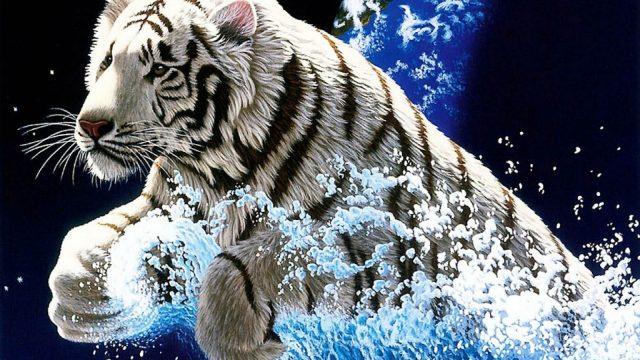 স্বপ্ন দেখতে নেই মানা: বাংলাদেশের অনুসরণীয় শীর্ষ ১০ প্রফেশনাল টেকি