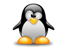 নতুন ইউজারদের জন্য Best Linux ! ২