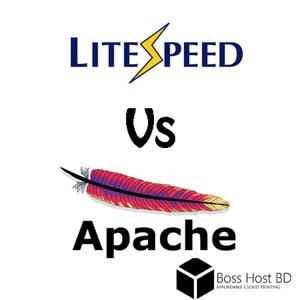 Hosting কেনার আগে জেনে নিন – Apache নাকি LiteSpeed ভাল হবে?